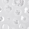 ELEMIS Pro-Collagen Renewal Serum - Обновляющая сыворотка, 15 мл